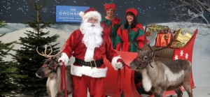 santa, elves and real reindeer